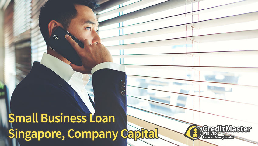 Small Business Loan Singapore, Company Capital